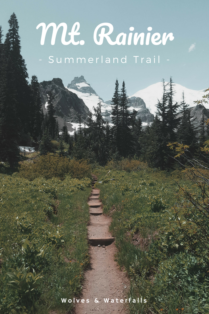 Hiking Summerland - Panhandle Gap at Mt. Rainier