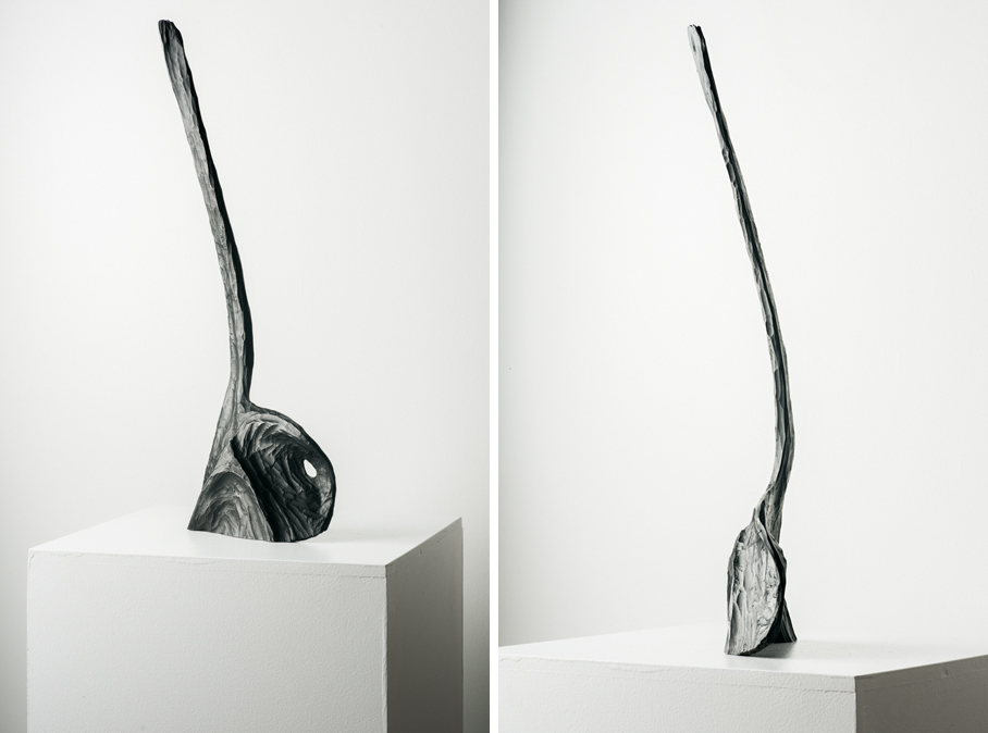 Orca, 2019, Bronze with black patina, 24x8.5x3in