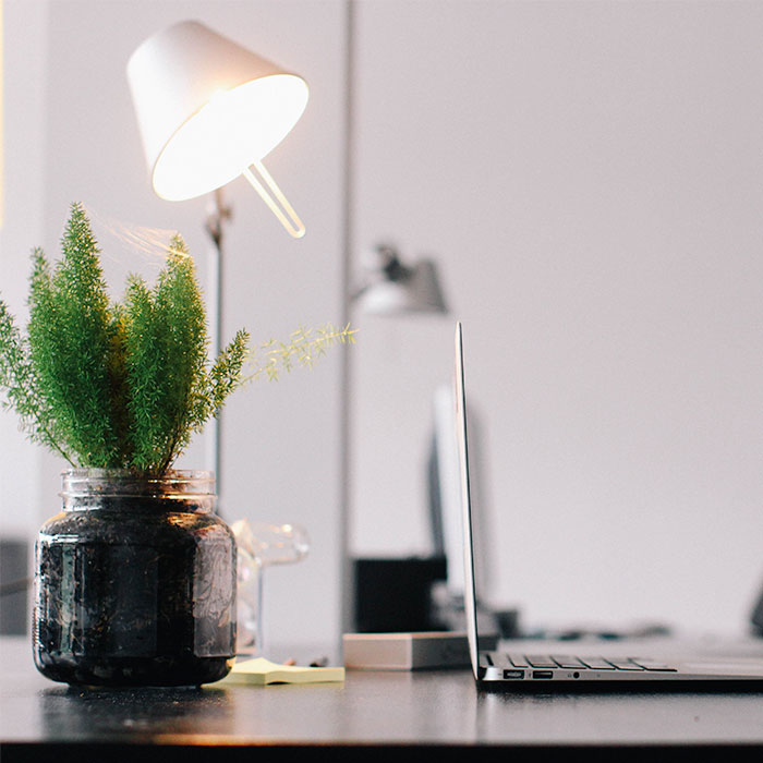 photo-square-plant-and-laptop.jpg