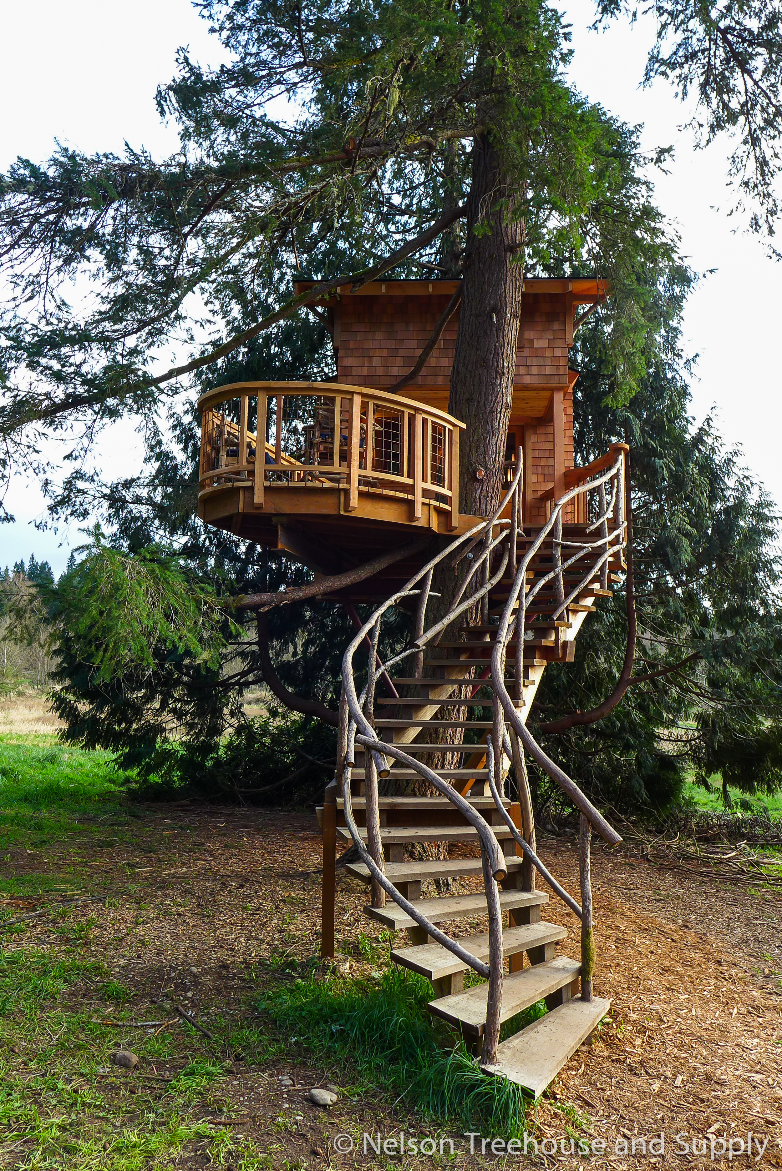 charlies_treehouse_stairs