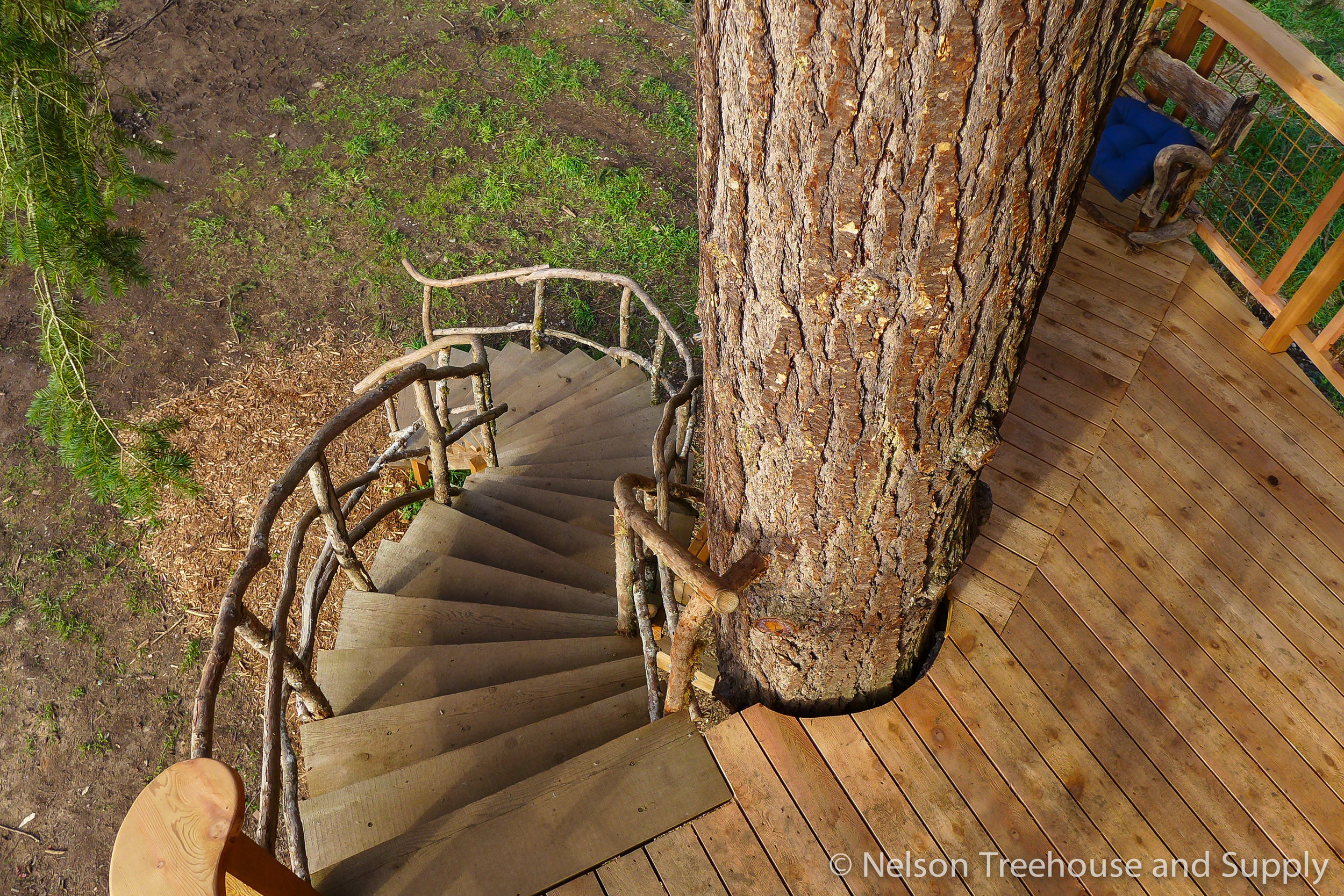 charlies_treehouse_stairs_2