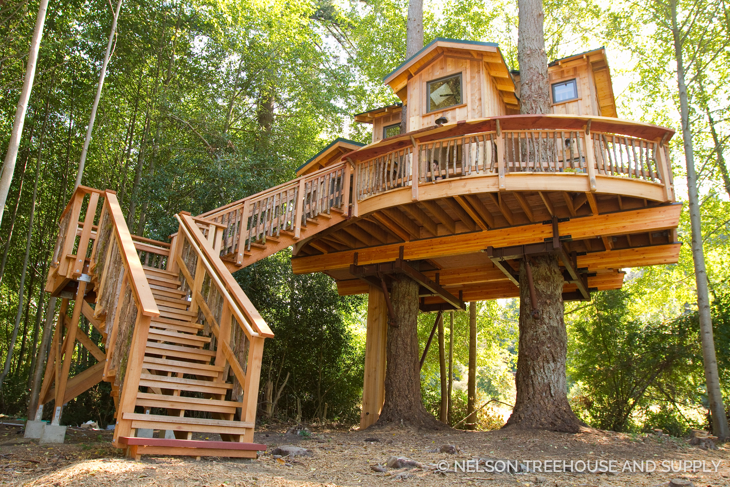 The  Orcas Island treehouse  was one of Daryl's recent projects.
