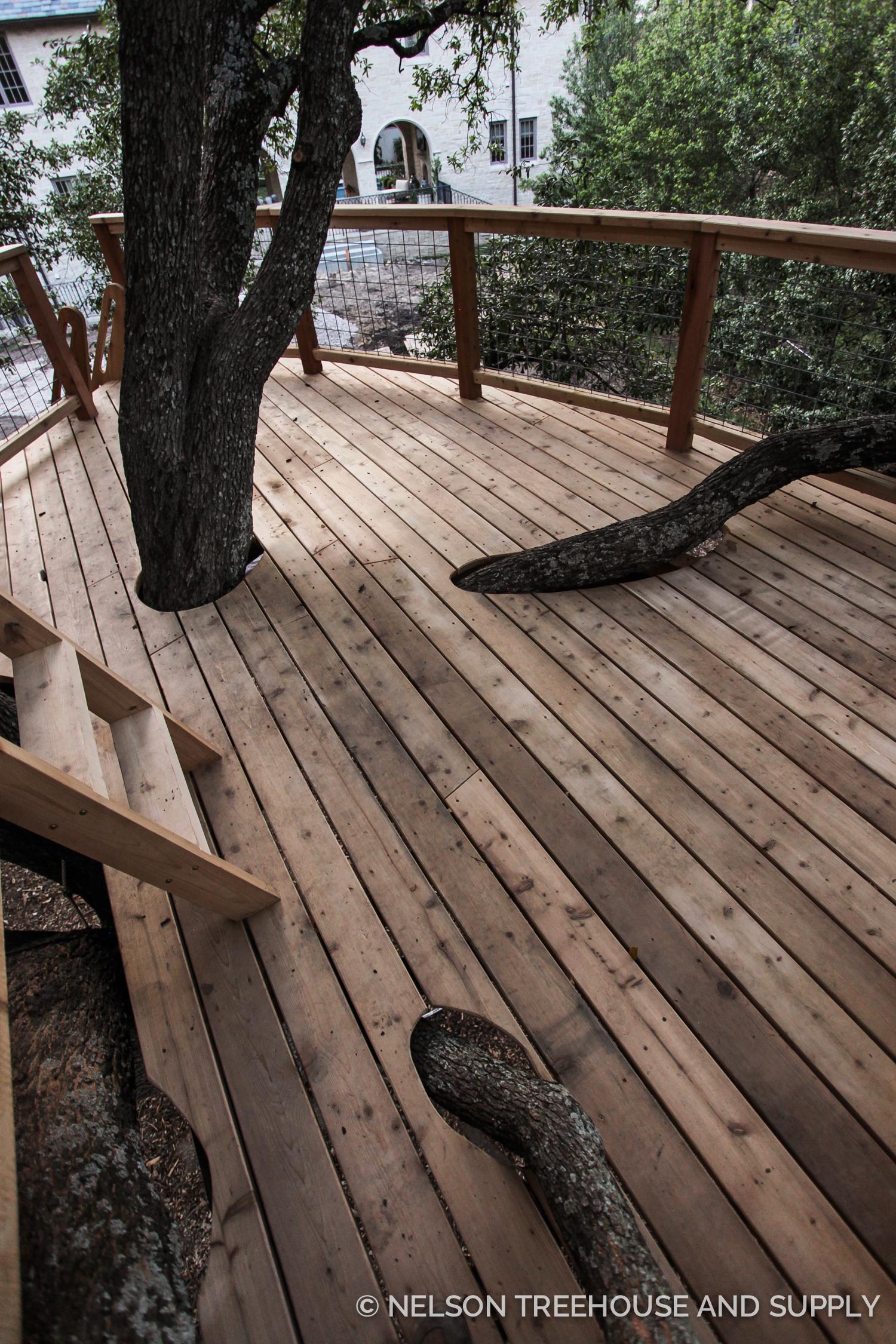 Quercus Treefort-icus Treehouse