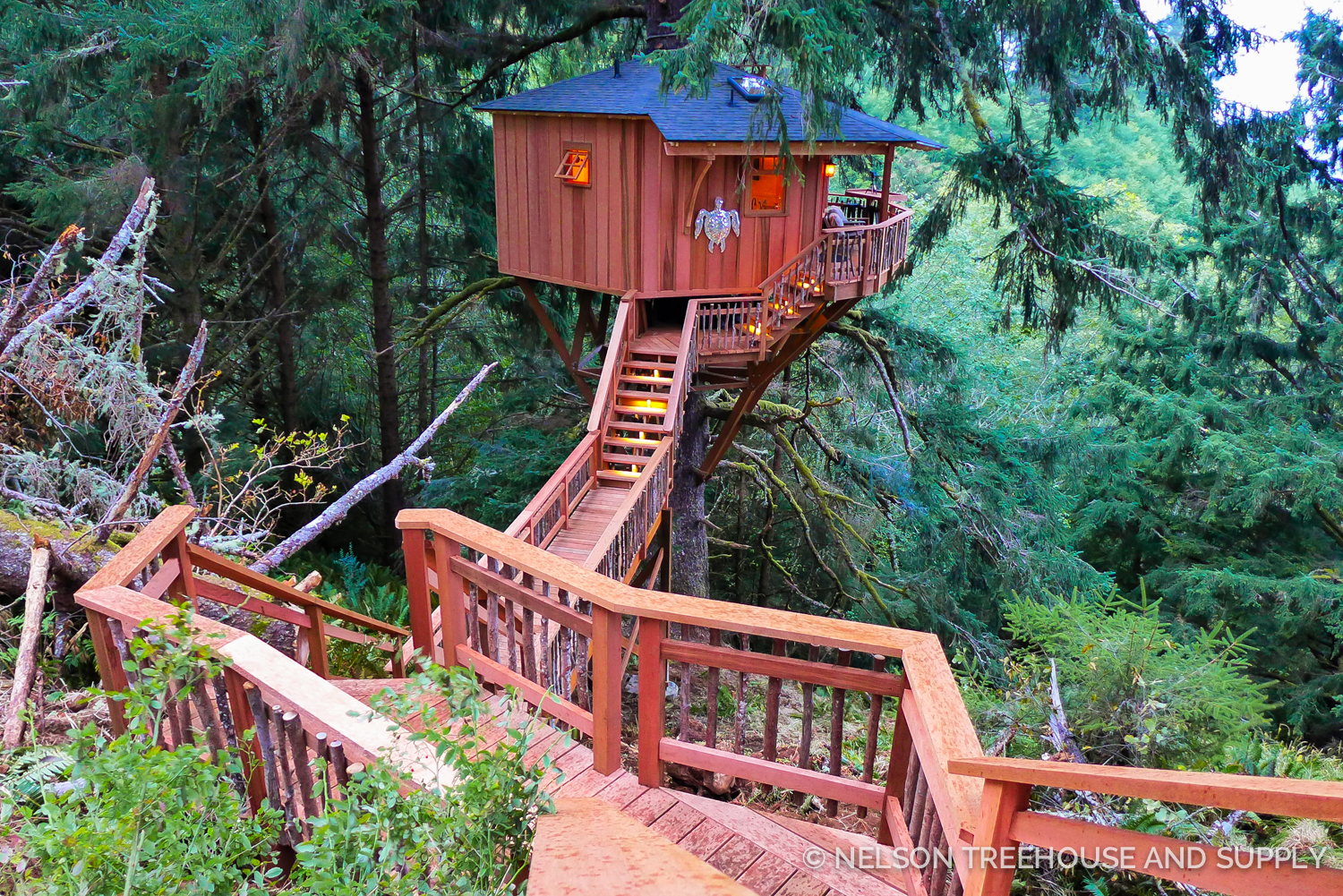 the Single spruce Treehome.
