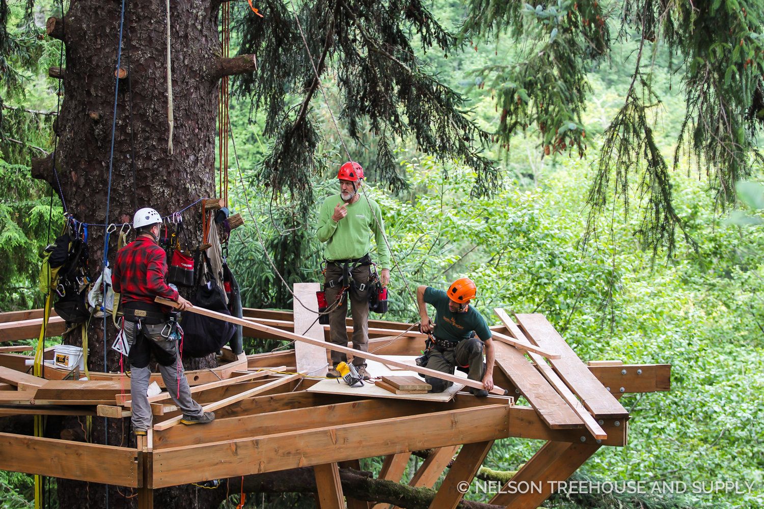 Building the platform of the SIngle Spruce Treehome.