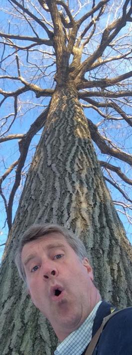 Pete tree selfie