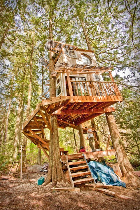 Devin's STunning Treehouse. He and his now-wife, Katie lived here for two years.