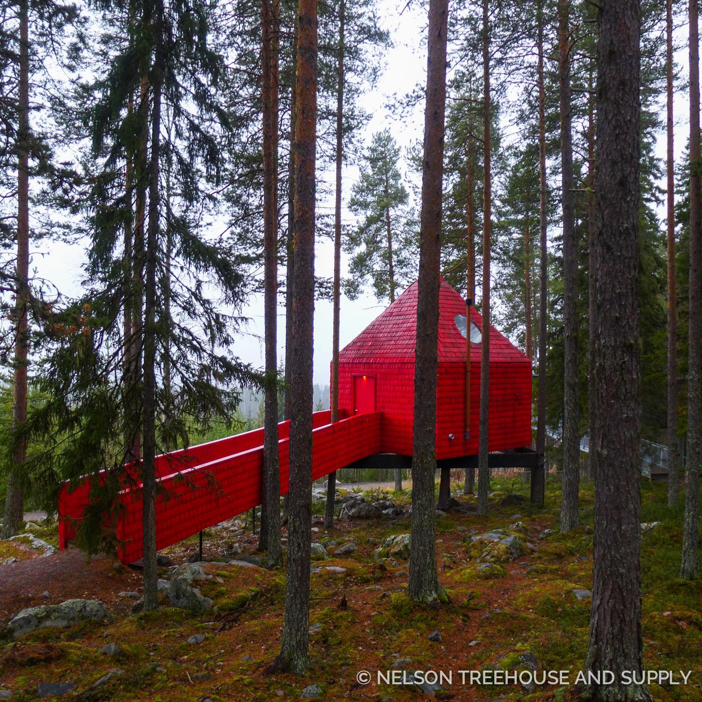 Tree_Hotel_Sweden_2016-4.jpg