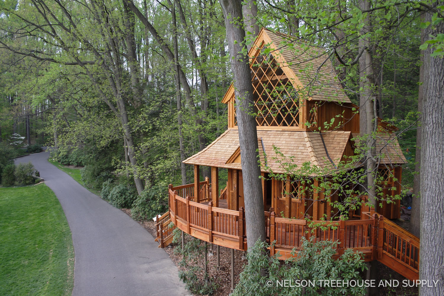 Chuck's first NT&S job was at the Longwood Gardens treehouse in Pennsylvania.