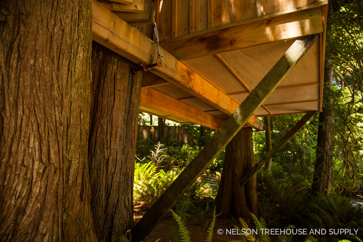 Check out the TABs on the Upper Pond treehouse! They're still just as supportive today as they were when Pete first built this beauty.