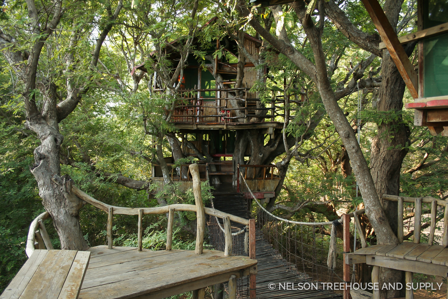Toby's dream treehouse would have a mostly open-air design like this treehouse in China