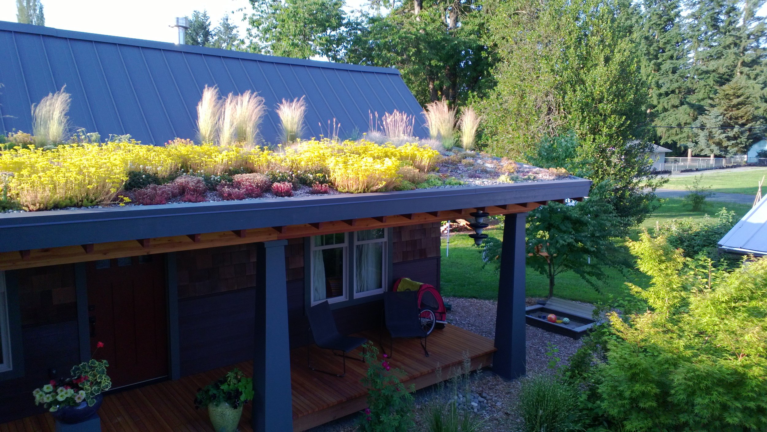 Toby designed and built this green roof on his home in Washington State.