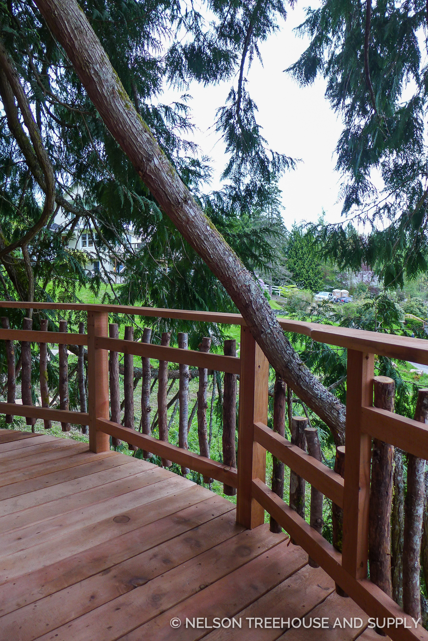 Instead of cutting this branch, the crew built the railing around it!