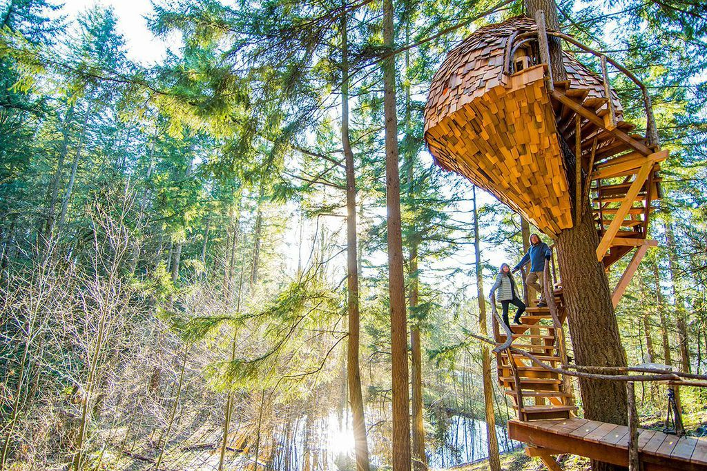 The Beehive Treehouse in Washington