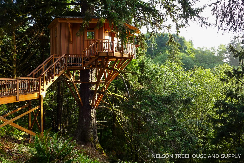 Pete Nelson Single Tree Treehouse