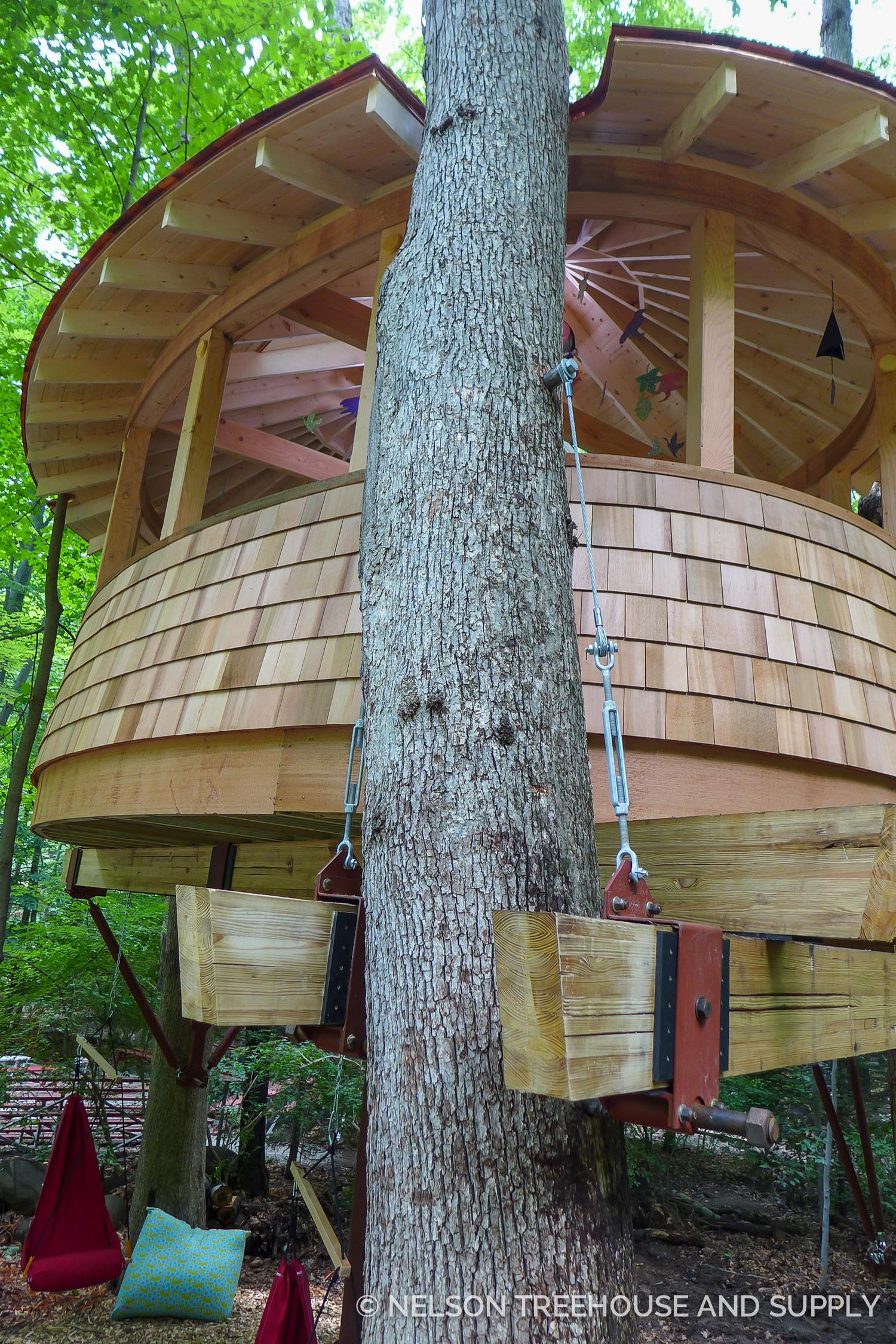 Nelson Treehouse Sunrise Day Camp
