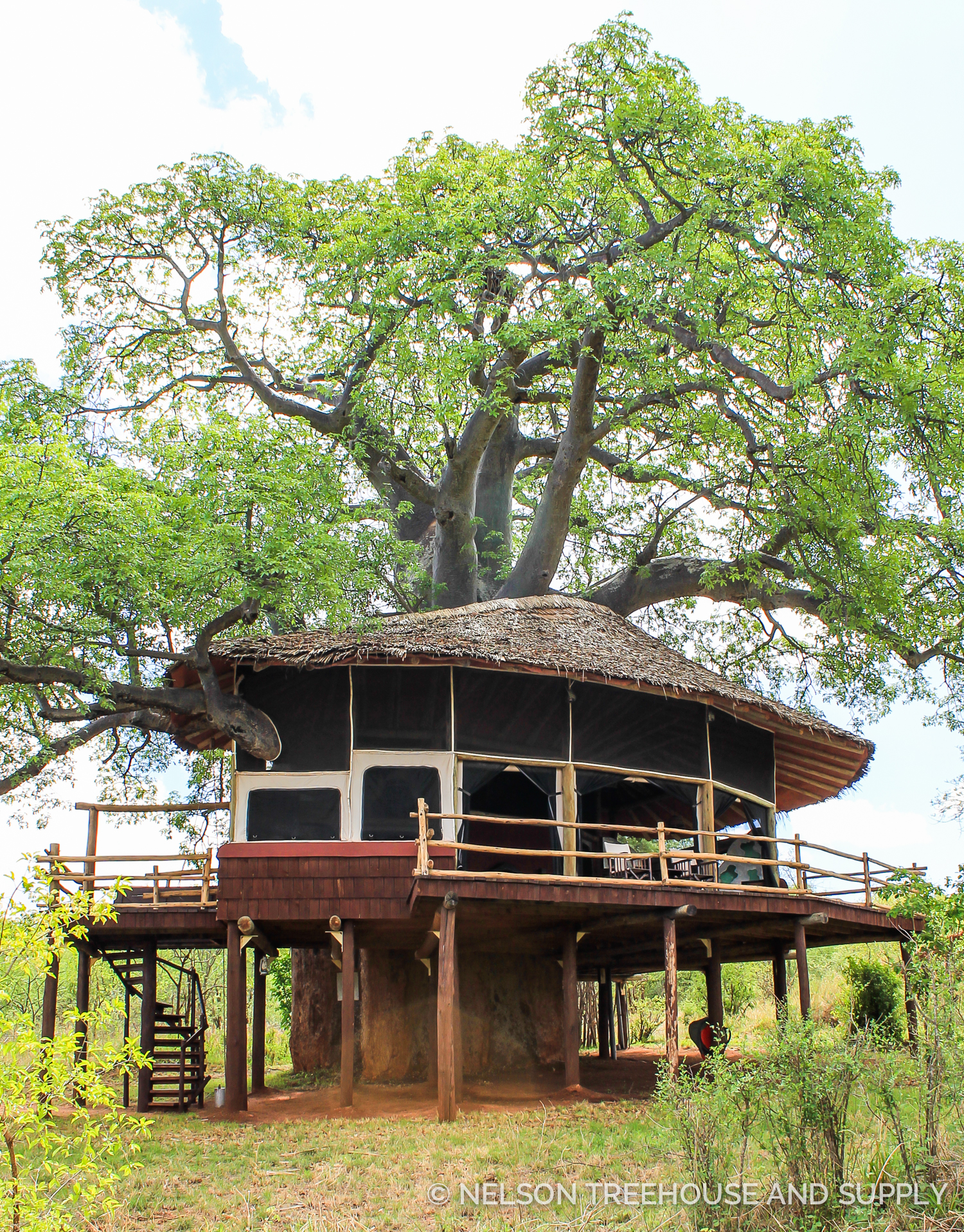 Tanzania Treehouse. Photo by Dylan Rauch.