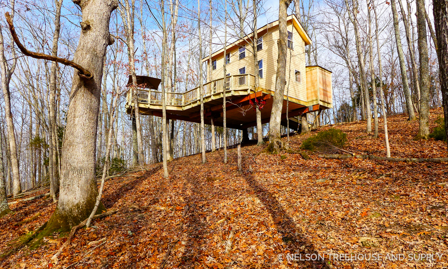 Nelson Treehouse Kentucky Climber's Cottage