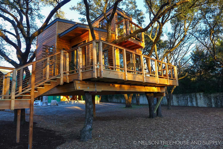 treehouse-masters-city-sleeker-26.jpg