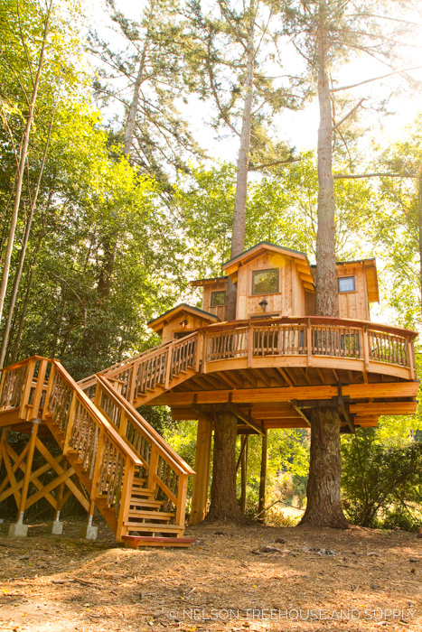ORCAS ISLAND TREEHOUSE     CLICK FOR PHOTO TOUR >>     Location:  Washington  Year Built:  2016  Square Feet:  356  Elevation:  14 ft Fully tree-supported  Seasonality:  All-season