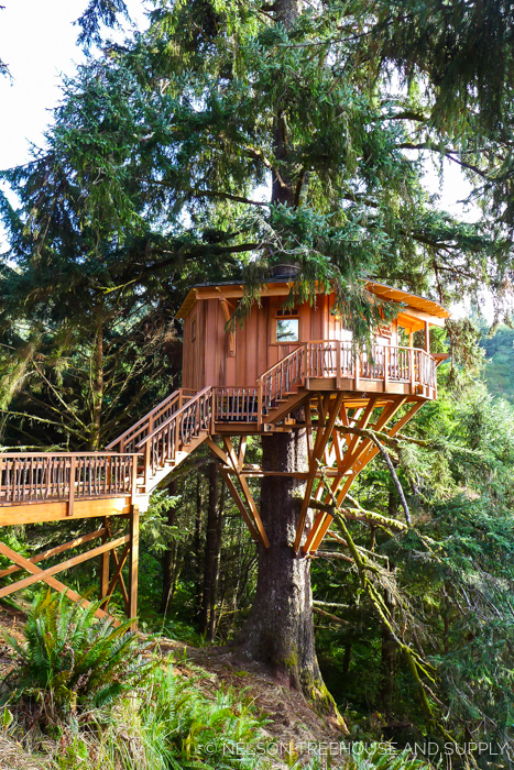 SINGLE-TREE TREEHOME     CLICK FOR PHOTO TOUR >>     Location:  Oregon  Year Built:  2015  Square Feet:  354  Elevation:  25 ft Single-tree supported  Seasonality:  All-season