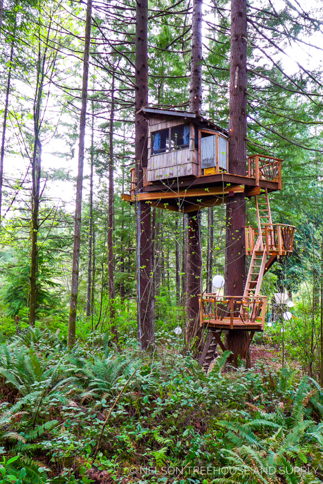 NELSON FAMILY TREEHOUSE     CLICK FOR PHOTO TOUR >>     Location:  Washington  Year Built:  2015  Square Feet:  63  Elevation:  32 ft Fully tree-supported  Seasonality:  Three-season