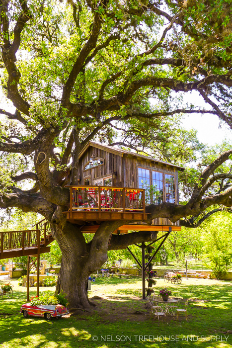 LAUREL TREE DINING TREEHOUSE     CLICK FOR PHOTO TOUR >>     Location:  Laurel Tree Restaurant, Utopia, Texas  Year Built:  2016  Square Feet:  201  Elevation:  13 ft Combination tree- and steel-supported  Seasonality:  All-season