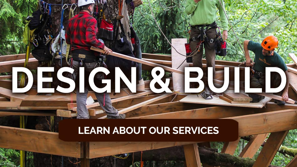 nelson-treehouse-and-supply-treehouse-design-build.jpg