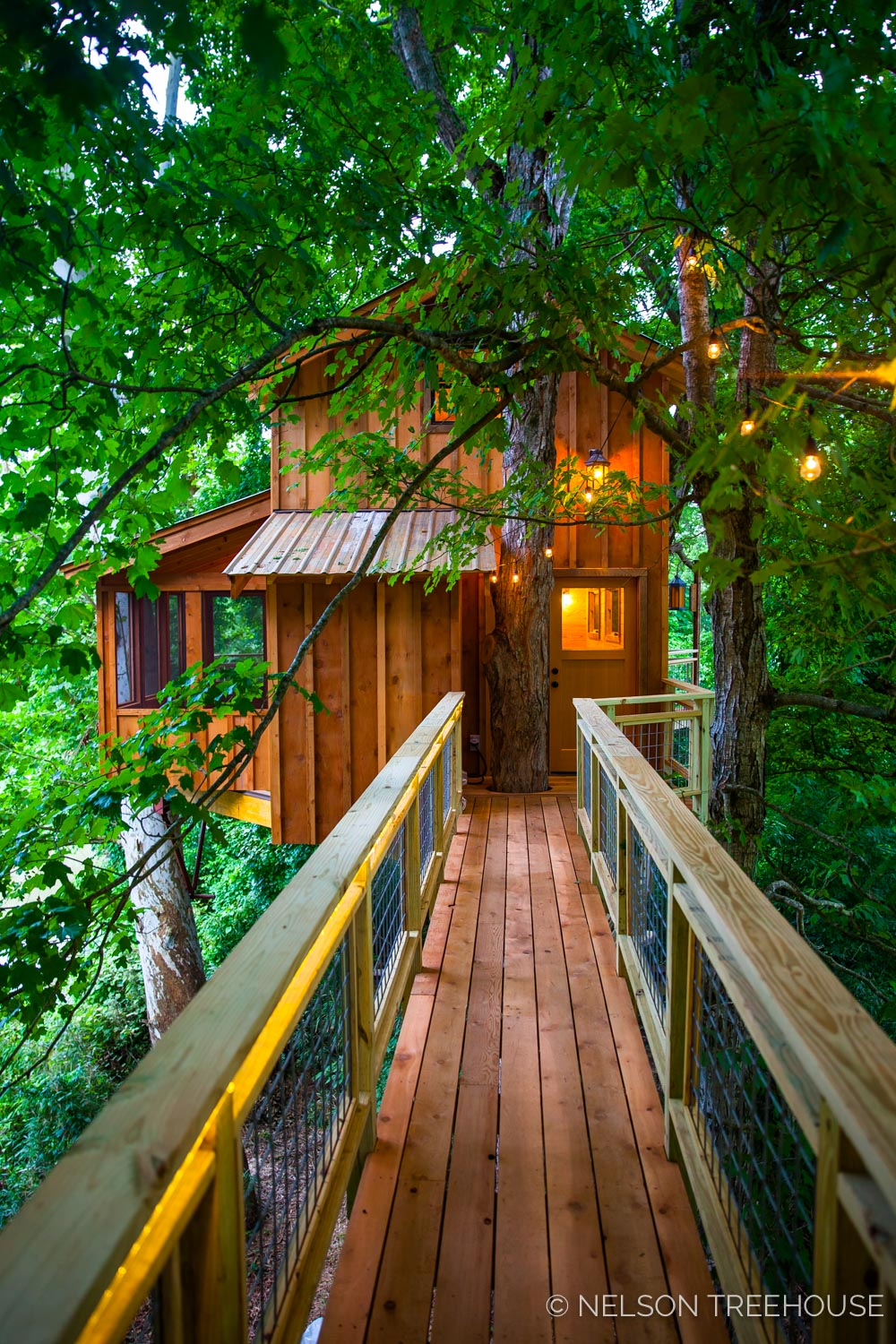 TenNessee Riverbank Treehouse Facade