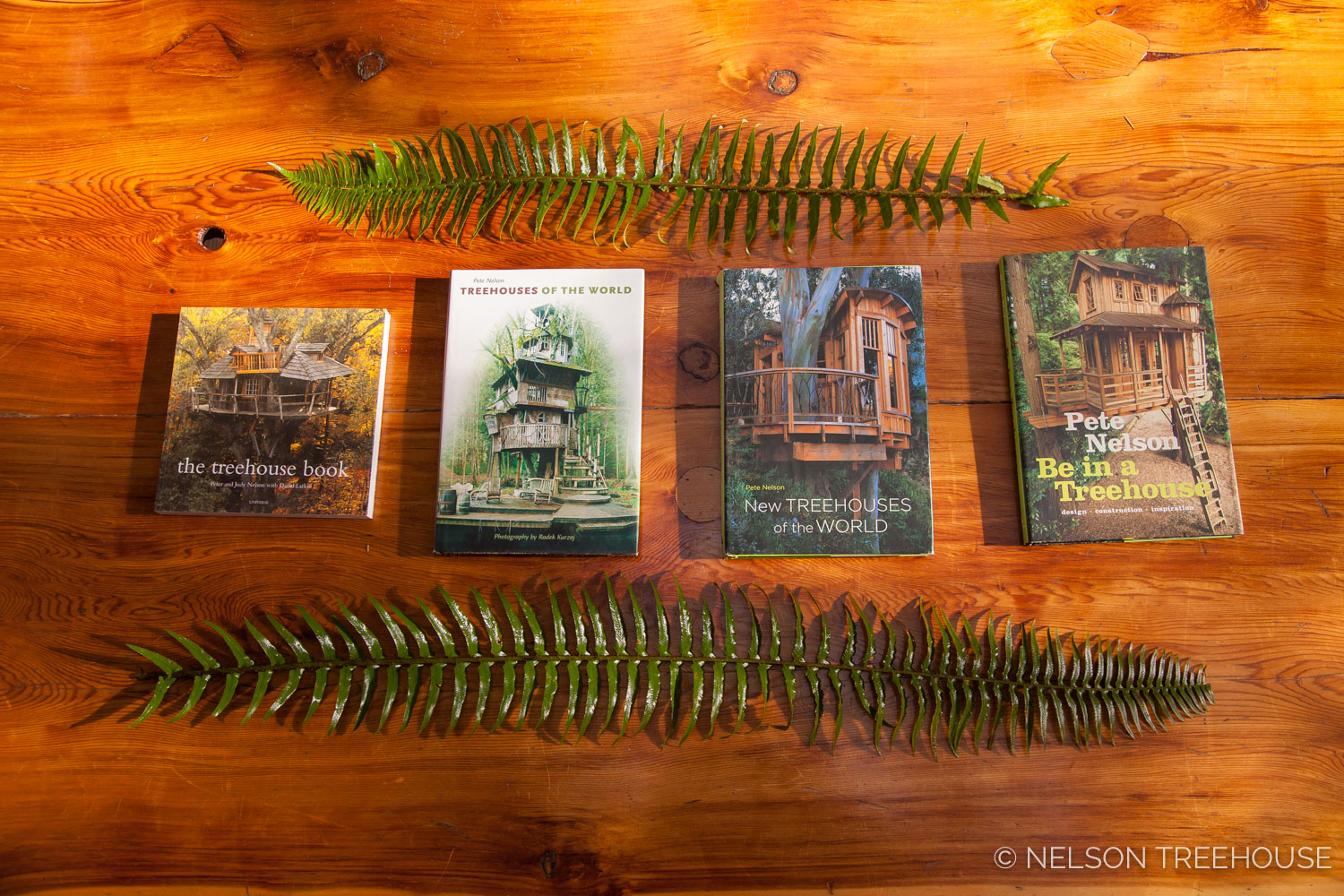 Pete Nelson Treehouse books