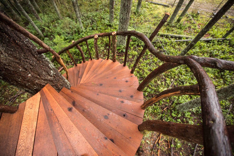 Safari Treehouse Natural Branch Railing