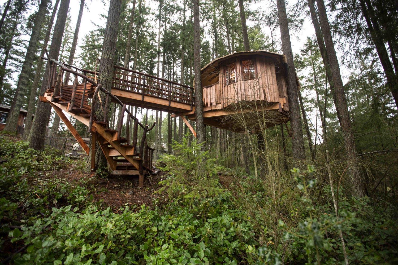 Safari Treehouse Facade