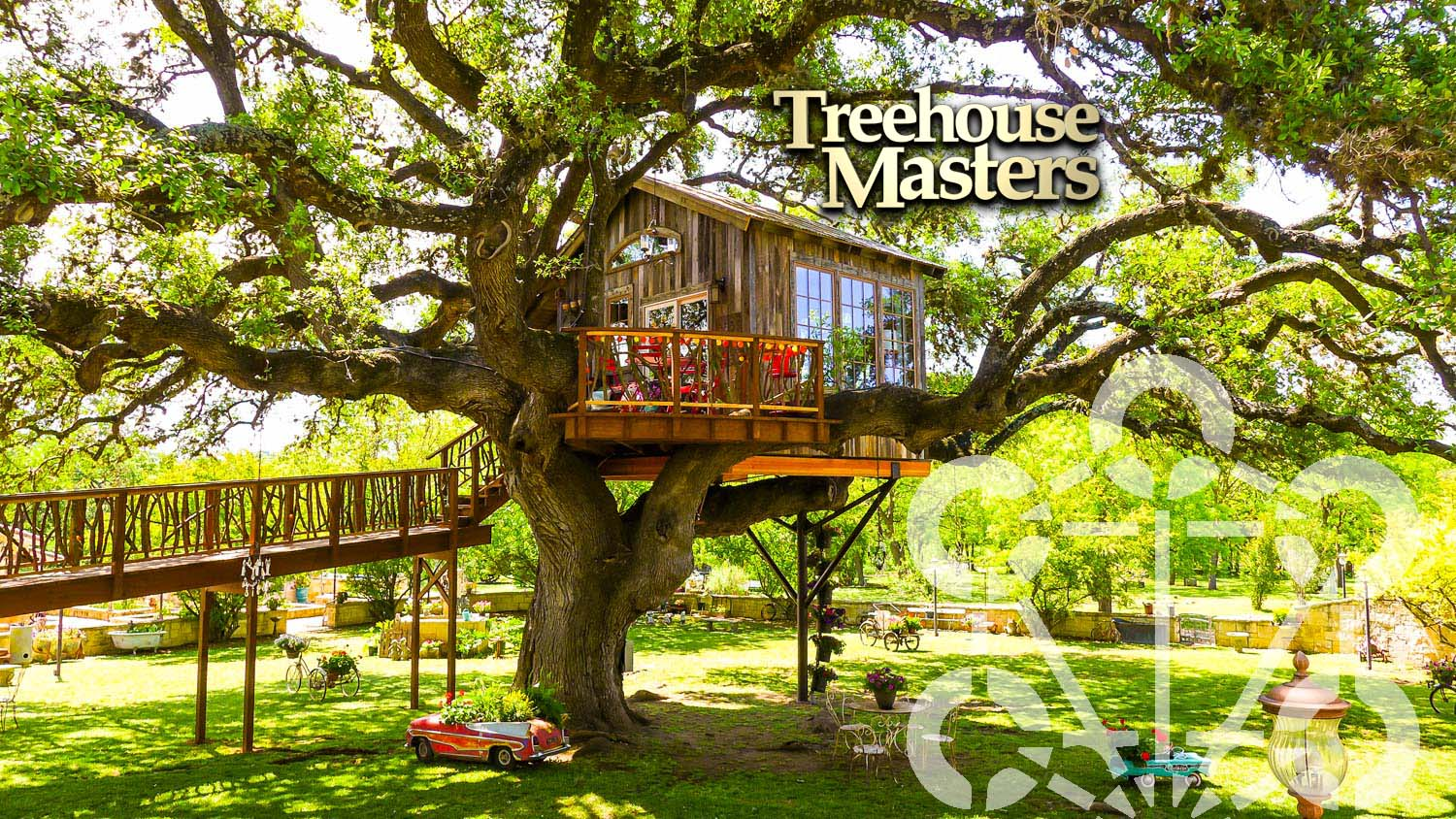 Picture of: Treehouse Masters Nelson Treehouse Nelson Treehouse