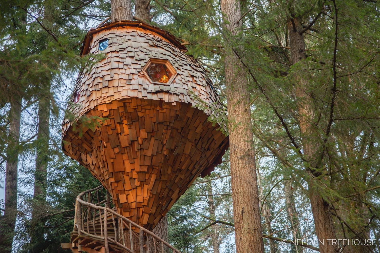 Cedar shingles on the beehive treehouse