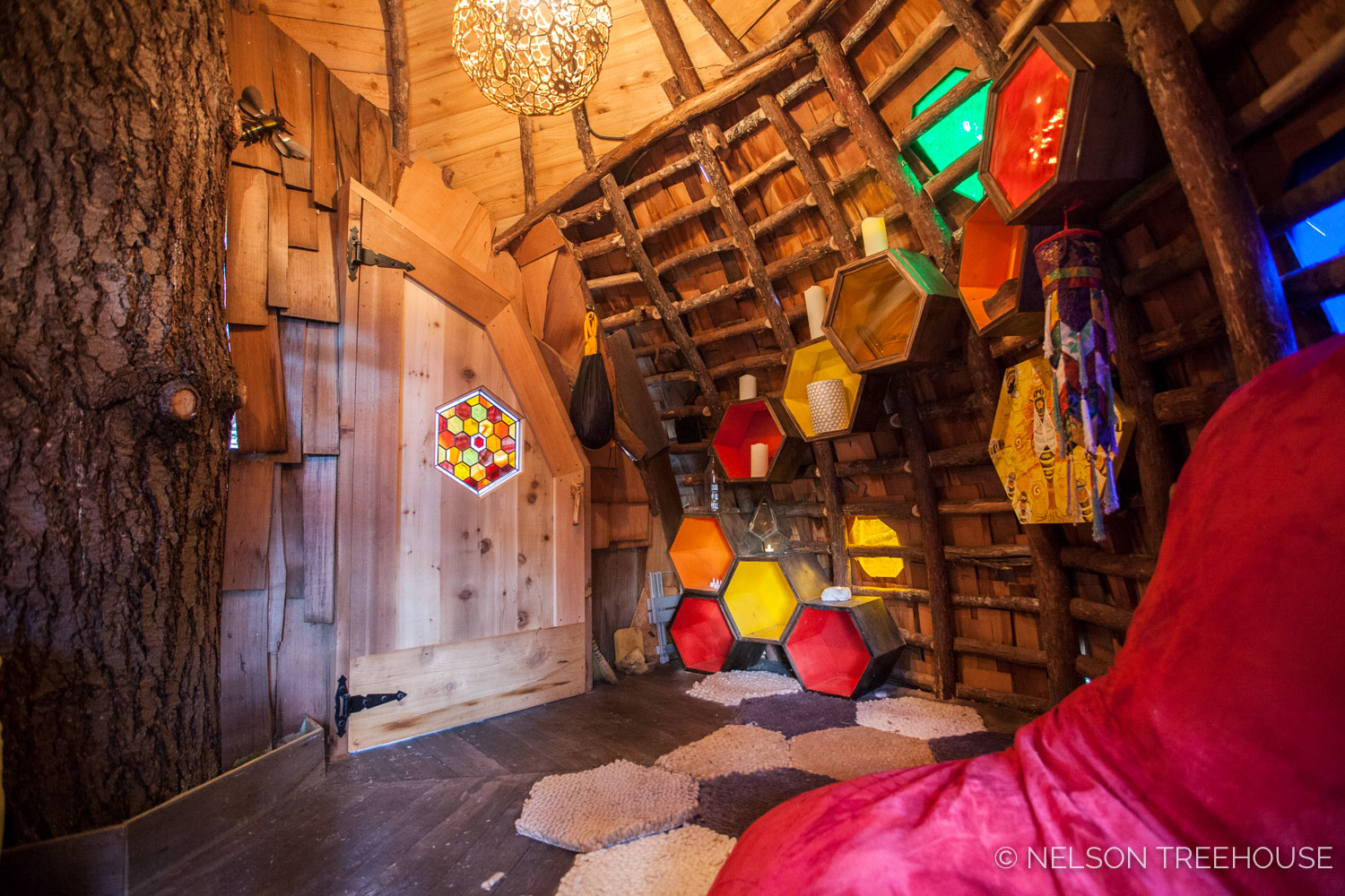 Inside the Beehive Treehouse