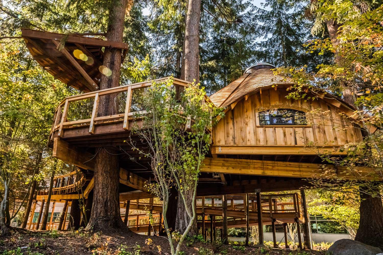 Microsoft Treehouses - Photo Courtesy of Microsoft