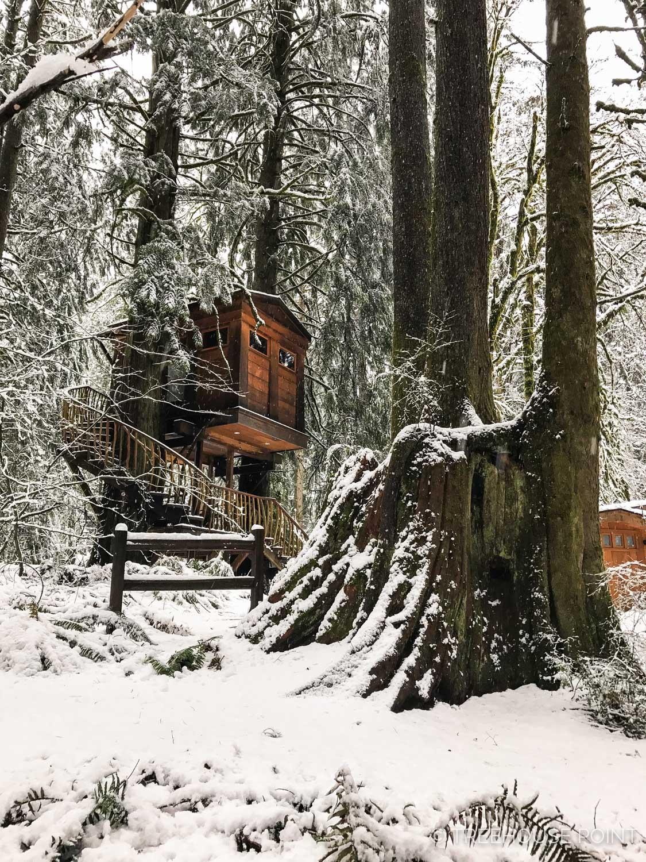 Bonbib Treehouse in the winter