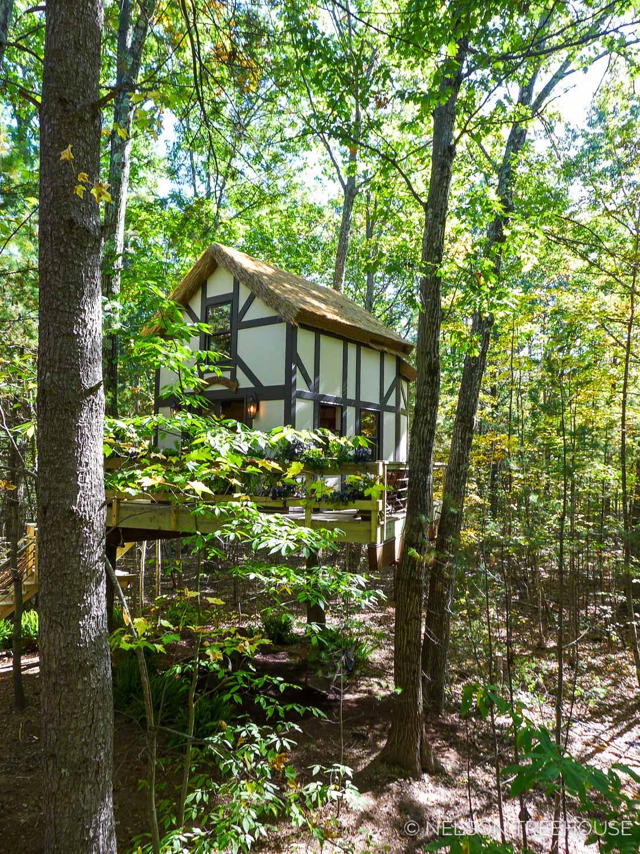 MA-Nelson-Treehouse-2017-28.jpg