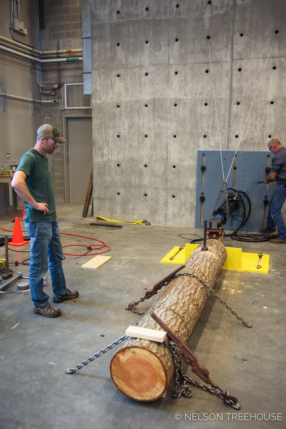 Logs were chained to the floor of the CMEC and attached to a loading setup.