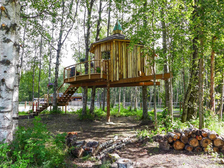 Alaskan treetop sauna - Nelson Treehouse