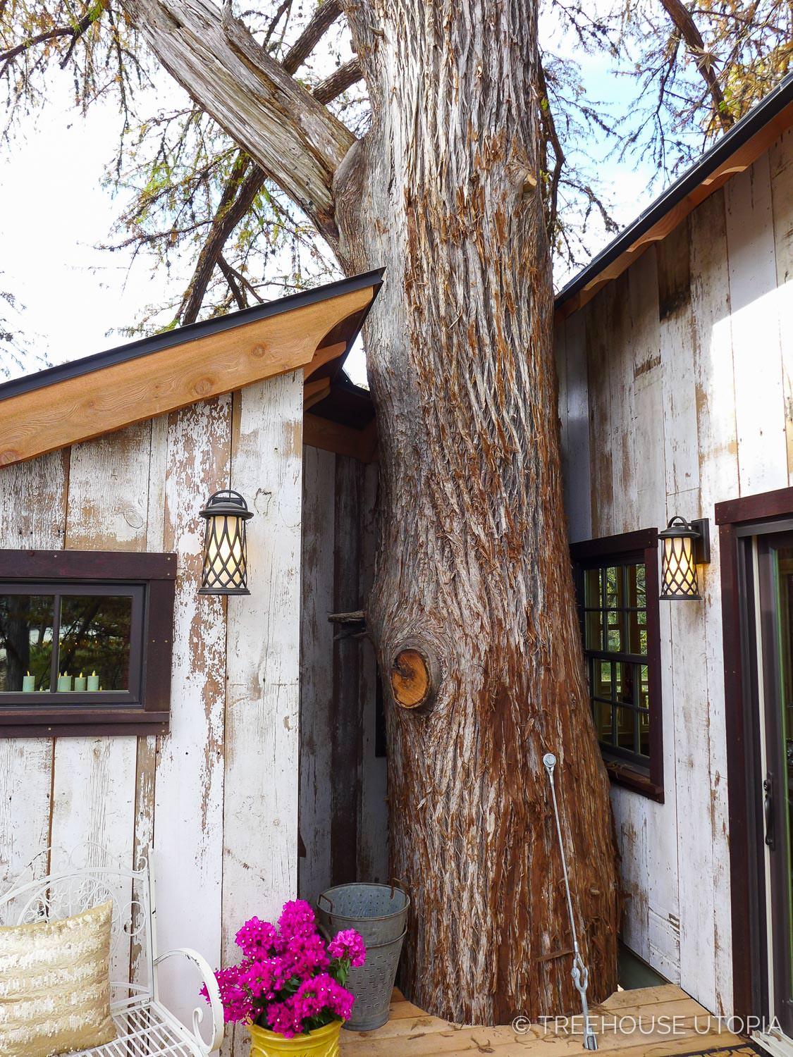 Cypress through back deck on Chapelle at Treehouse Utopia, a Texas Hill Country Retreat. Photo by Nelson Treehouse.