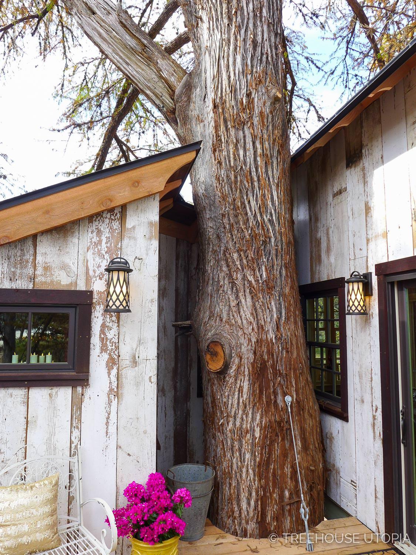 Chapelle_Treehouse_Utopia_2017-221.jpg