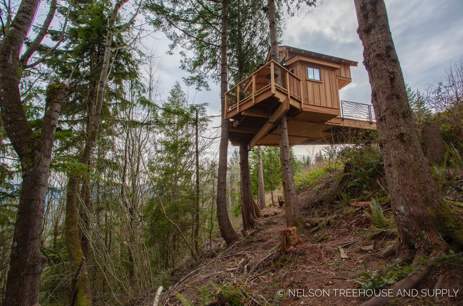 side view of the Bulldog Bungalow - nelson Treehouse