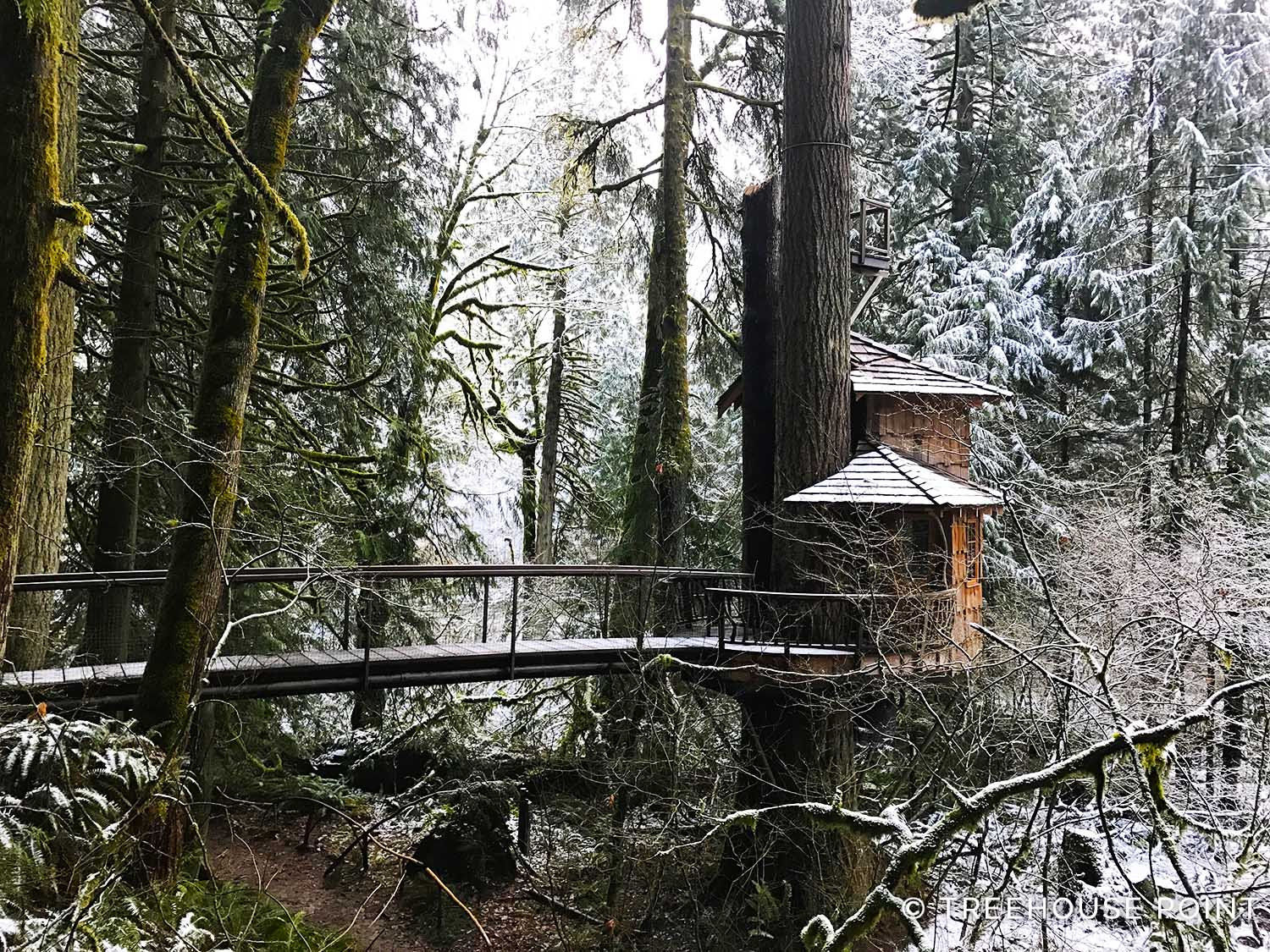 THE BURL IN SNOW AT TREEHOUSE POINT.