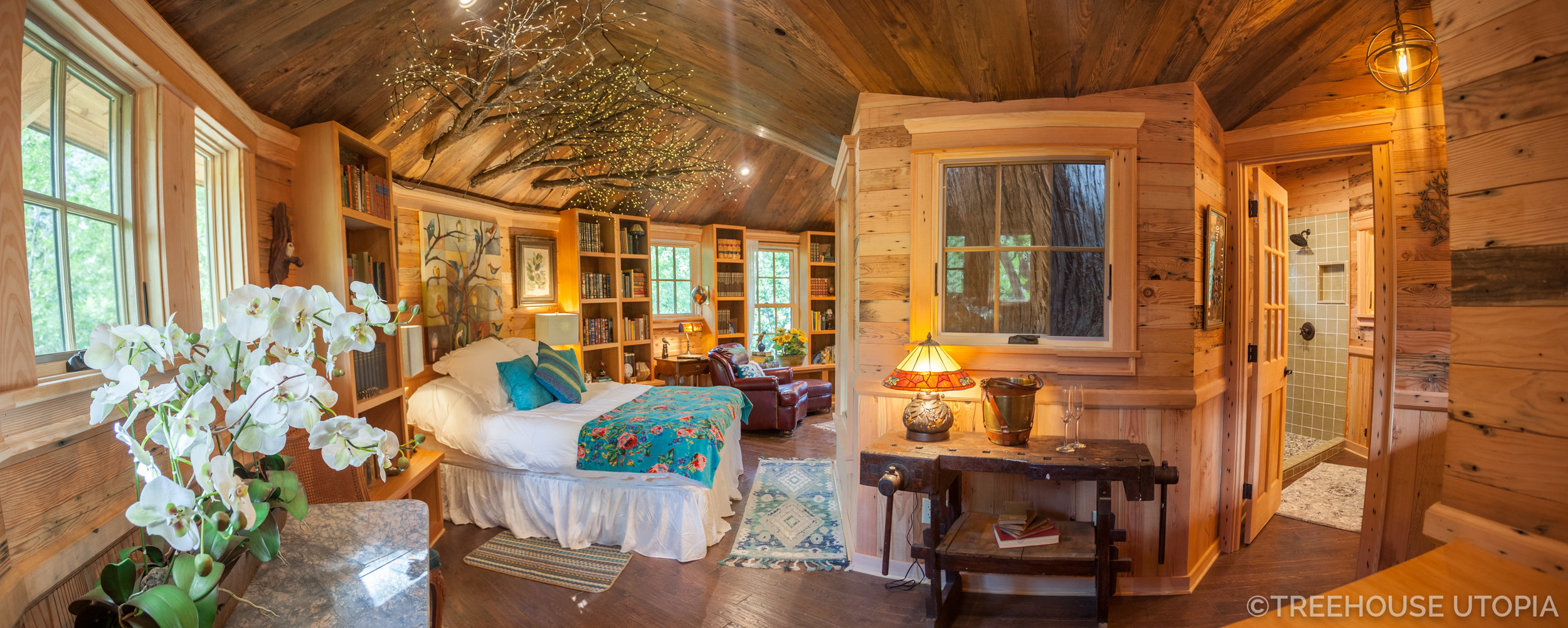 Treehouse Utopia Now Open For Reservations Nelson Treehouse