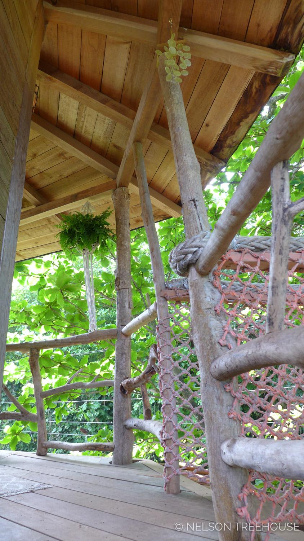 Kauai-Nelson-Treehouse-2018-203.jpg