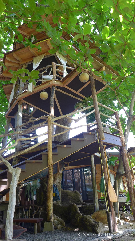Kauai-Nelson-Treehouse-2018-321.jpg