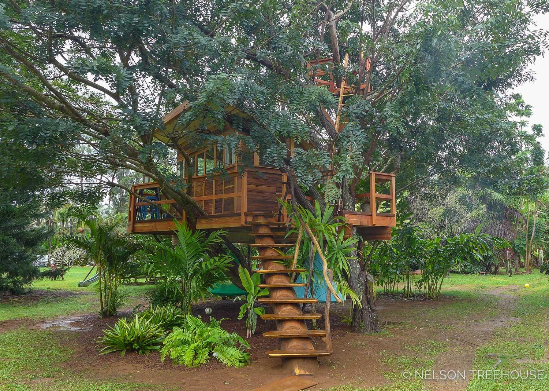 Kauai-Nelson-Treehouse-2018-72.jpg