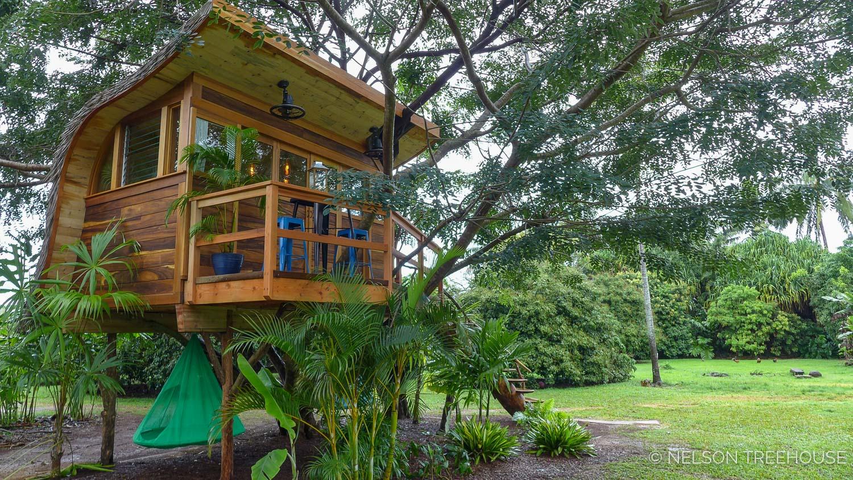 Kauai-Nelson-Treehouse-2018-83.jpg