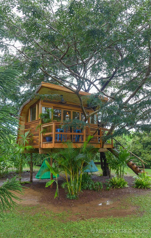Kauai-Nelson-Treehouse-2018-109.jpg